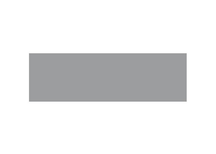 RTS Logo grau